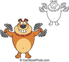 Brown Bulldog mit Dumpfbacken.
