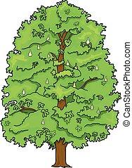 Brustnussbaum.