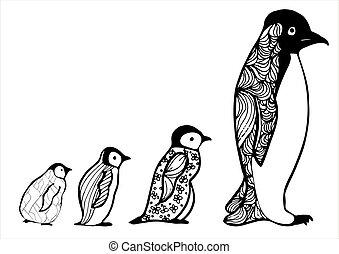 buch, anti-stress, style., penguin., gezeichnet, skizze, baby, färbung, erwachsener, picture., zentangle, hand