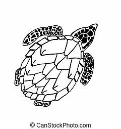 buch, bild, vektor, groß, kinder, färbung, turtle., adults.