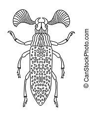 buch, färbung, käfer, book., insekt, vektor, beetles., erwachsene, fanous, children., illustration., linear, gekritzel, anti-stress, hand-drawn