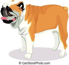 Bulldog Cartoon Dog.