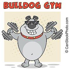 Bulldog Cartoon Maskottchen mit Sonnenbrille, die mit Dumpingeln arbeitet
