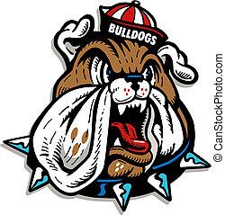 Bulldog mit winziger Mütze.