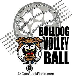 Bulldog Volleyball Design.