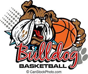 bulldogge, basketball, mittel