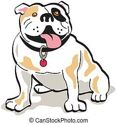 bulldogge, graphische kunst, hund, klammer