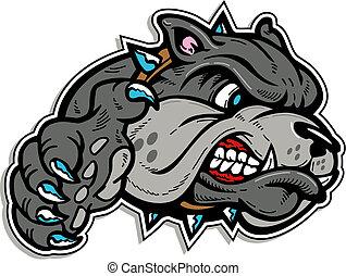 bulldogge, mittel, pfote, gesicht