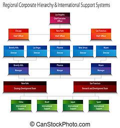 c, hierarchie, unterstuetzung, regional, systeme, international, korporativ