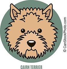 cairn, vektor, porträt, terrier., abbildung