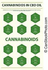 cannabinoids, senkrecht, formeln, oel, infographic, cbd, strukturell
