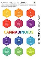 cannabinoids, senkrecht, geschaeftswelt, oel, formeln, infographic, cbd, strukturell