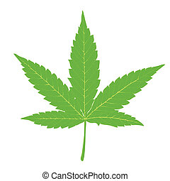 Cannabisblätter.