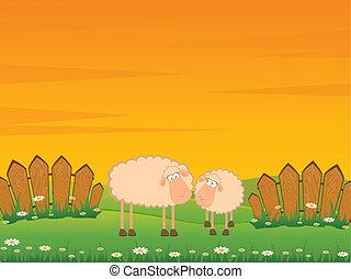 Cartoon lächelnde Schafe