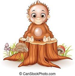 Cartoon süß, ein kleiner Affe sitzt.