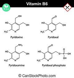Chemische Formeln von Vitamin B6 Formen.