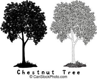 Chestnut Baum Silhouette Konturen und Inschriften