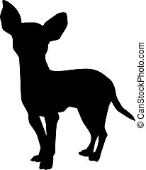 Chihuahua-Vektor.