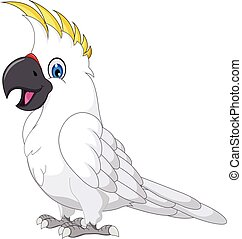 Cockatoo Cartoon posing.