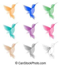 colibri, stilisiert, gefärbt