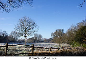 Country-Szene im Winter