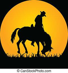 Cowboy im Wildpferd