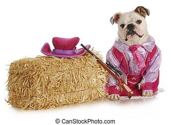 cowgirl, angezogene , mögen, auf, hund