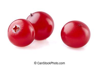 Cranberry in der Nähe.