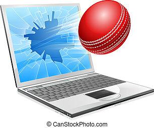 Cricket Laptop kaputtes Screen-Konzept.