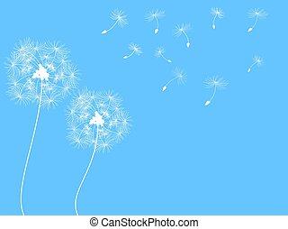 Dandelion Hintergrund.