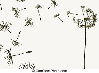 Dandelions.