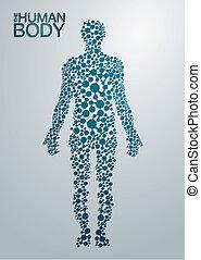 Das menschliche Körperkonzept.