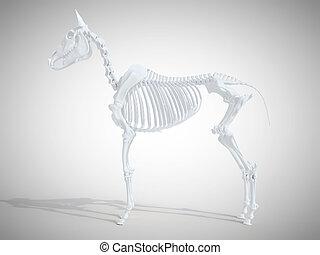 Das Skelettsystem.