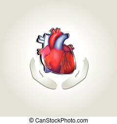 Das Symbol für die Gesundheit des Menschen.