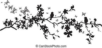 decorati, vektor, -, vögel