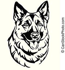 dekorativ, schafhirte, vektor, hund, abbildung, 2, porträt