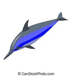delfin, springen, isometrisch, ikone, stil