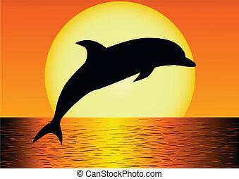 Delfinsilhouette
