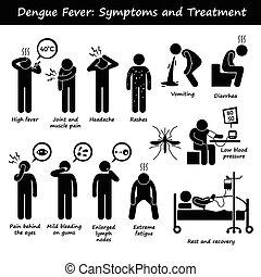 Dengue aedes Symptome und Behandlung