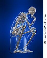 denken, skelett
