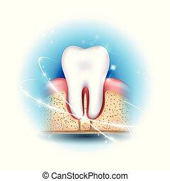 dentale gesundheit, sorgfalt