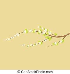 Der blühende Kirschbaumzweig im Frühling.