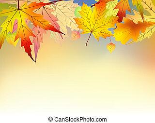 Der bunte Herbst hinterlässt Hintergrund.