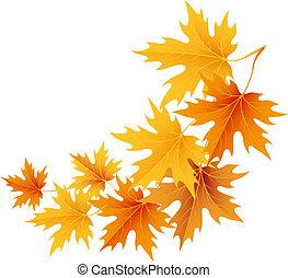 Der Herbst verlässt den Hintergrund.