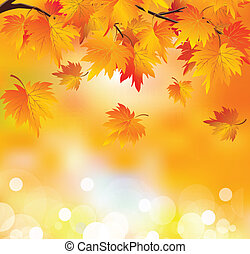 Der Herbstbaumzweig