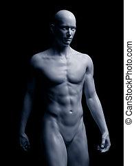 Der menschliche Körper.