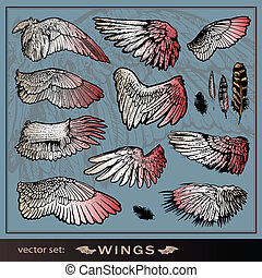 Der Vektor hat Flügel