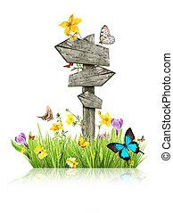 Der Wegweiser auf der Wiese mit Schmetterlingen, das Konzept des Frühlings
