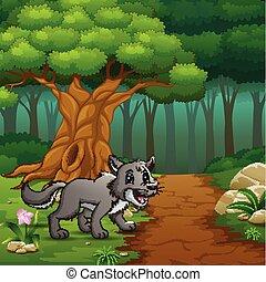 Der Wolf, der durch Waldhügel läuft.