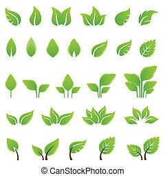 design, blätter, satz, grün, elemente